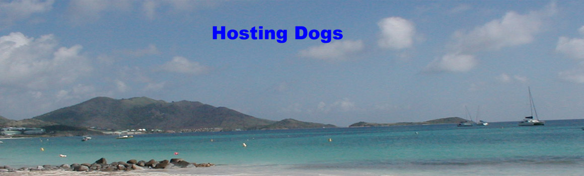 Hosting Dogs